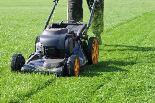 Taglio dell'erba con macchina a motore